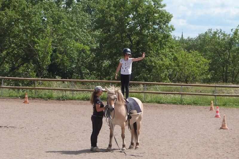 Cours particuliers d'équitation
