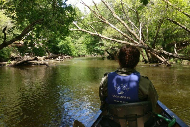 Grande journée en canoë sur la Leyre 24 km