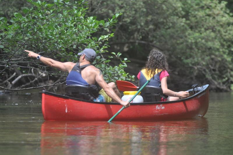 Descente journée avec moniteur en canoë sur la Leyre 14 km