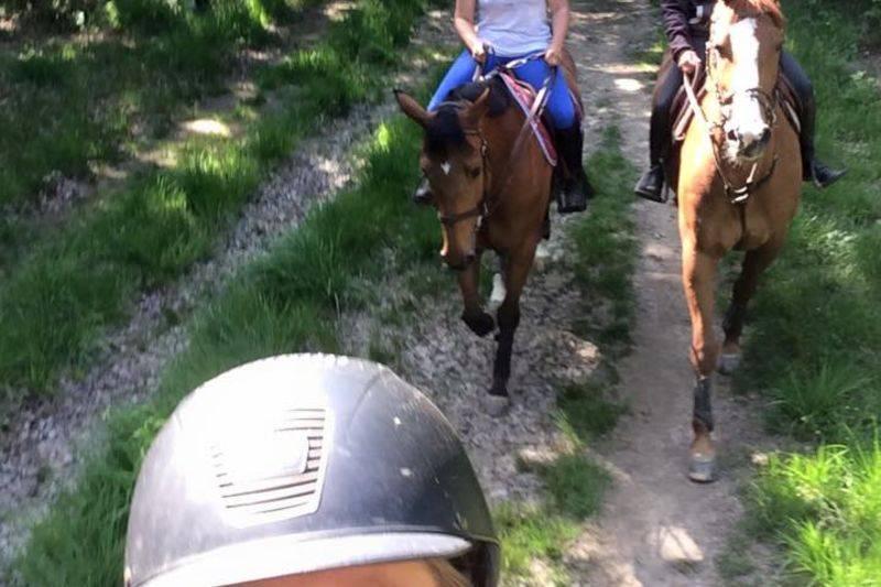 Balades à cheval privée