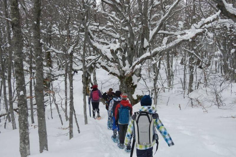 Randonnée en raquette à neige