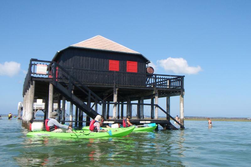 Balade en kayak vers l'Ile aux Oiseaux du Bassin d'Arcachon