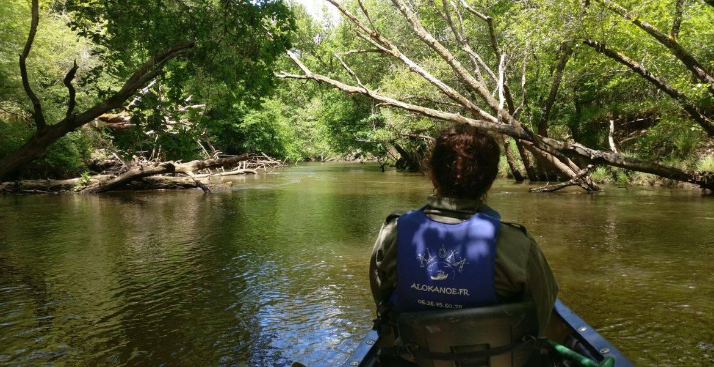 Descente de 24 km en grande journée en canoë sur la Leyre