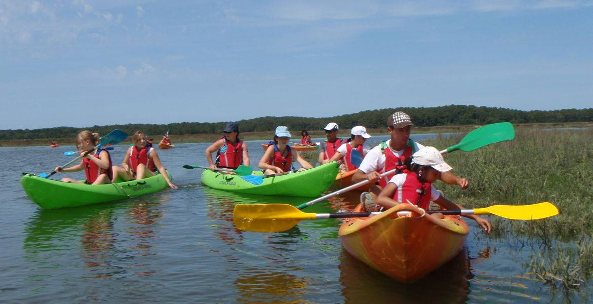 Kayak tour in the salted meadows in the Bassin d'Arcachon
