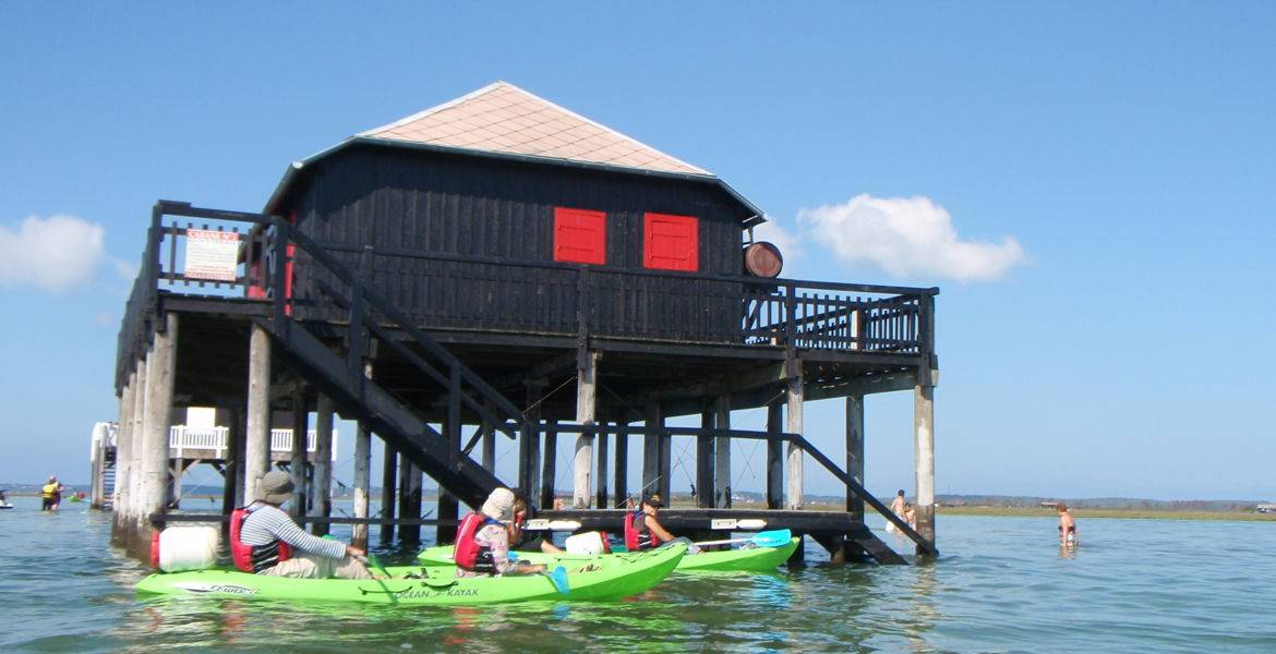 "Kayak tour to ""Birds Island"""