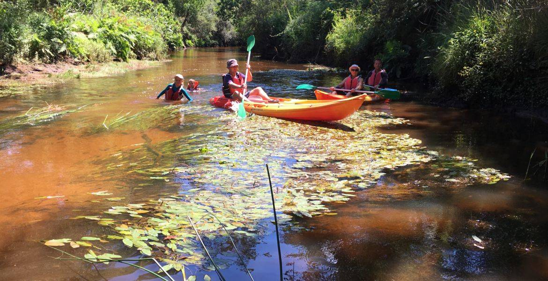 Location de kayak avec pause pique nique sur le Bassin d'Arcachon