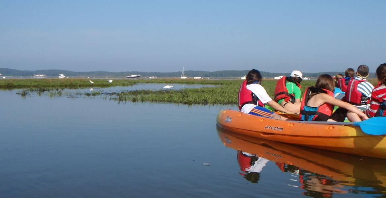 Ornithologie en kayak sur le Bassin d'Arcachon