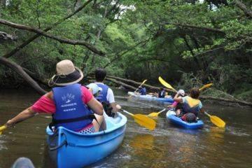 Itinérance de 2 à 4 jours sur la leyre en canoë avec bivouac (sur zone autorisée uniquement)