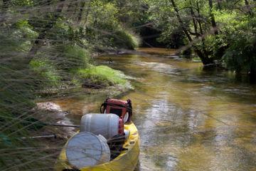 Descente demi journée en canoë sur l'eyre