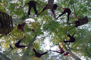 """Parcours dans les arbres sur filets de sécurité """"araignée"""""""