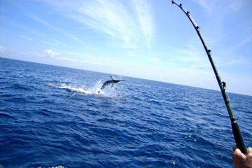 Pêche en haute mer au large de cap camarat, antibes, nice