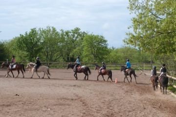 Day camps with horses