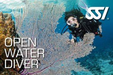 Open water diver (niveau 1 international)