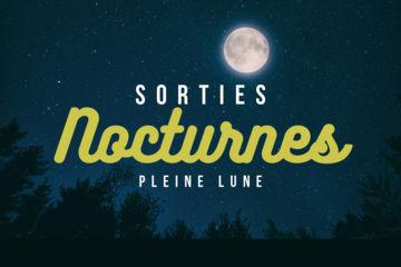 Balades sorties nocturnes en canoë