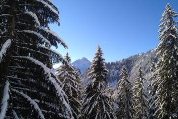 Ski off piste / nordic skiing