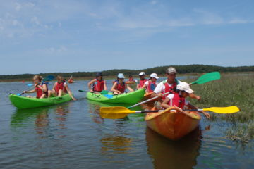 Hiring kayak and canoe in bassin d'arcachon