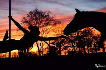 Evjf | balade à cheval + pole dance + repas