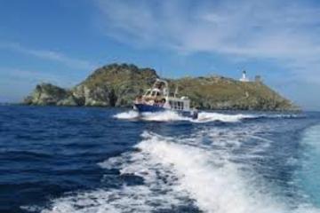 Promenade en  bateau de macinaggio à centuri avec  escale