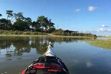 Balade en kayak à la conche du mimbeau sur le bassin d'arcachon